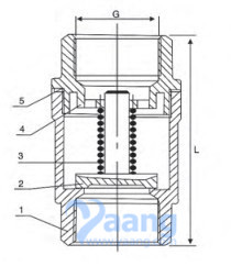 Vertical Check Valve Drawing