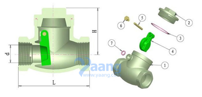 Stainless Steel Swing Check Valve 200PSI Drawing