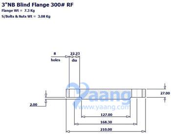 2019180254392001 - ASME B16.5 Alloy 625 Blind Flange RF 3 Inch 300#