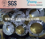 Class 900 Stainless Steel Flange