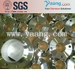 904L Flange/UNS NO8904 3000lb Forged Flange
