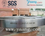 AISI 304 Stainless Steel Flange