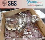 ASTM A182 F304 Stainless Steel Flange