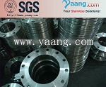 ASTM  F316L stainless flange