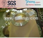 ASTM SS316 Stainless Steel Flange