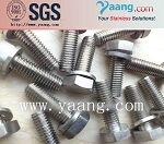 Alloy C276 Hexagon Bolts