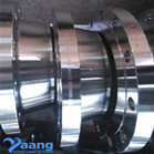 DN250 Sch40s CL150 A182 F316L Forged Stainless Steel WN RF Flanges