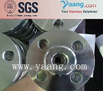 Duplex steel 254 smo flanges