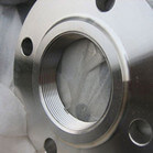 Excellent Service Stainless Steel Asme B16.5 Threaded Flange