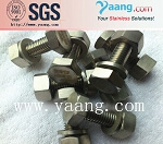 Inconel 600 Special Alloy Bolts and Nuts