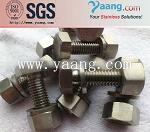 Inconel 600 Special Alloy Fasteners Bolt and Nut