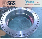 Nickel 2.4360 flange