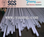 SAF 2205 Stainless Steel Pipe/ Seamless and Welded