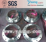 Stainless Steel 1.4541 flange