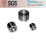 Stainless Steel 304 304L 316 316L Forged SW Coupling