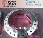 Stainless Steel ASTM B16.5 Flange DN200 WN RF