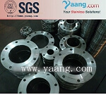 Stainless Steel ASTM B16.5 SO WN RF Flange