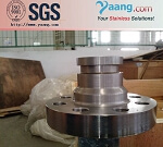 Stainless Steel Customized Forged Flange