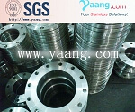 Stainless Steel Flange Class 150# 300# 600# 900# 1500#