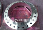 Stainless Steel Duct Flange F304 F316 F310 F321