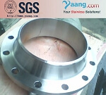 Stainless Steel Weld-Neck Flange 304L