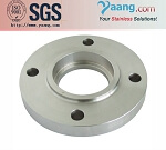 Yaang Stainless Steel Socket Weld Flange SW