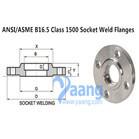 ANSI/ASME B16.5 Class 1500 Socket Weld Flanges
