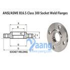 ANSI/ASME B16.5 Class 300 Socket Weld Flanges