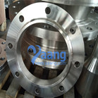 ANSI B16.5 Alloy 31 SO RF Flange 8 Inch CL150