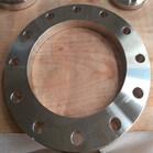 EN1092-1/01/B1 304L Plate Flange RF DN250 PN16