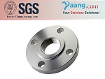 stainless steel A182 F316L flange